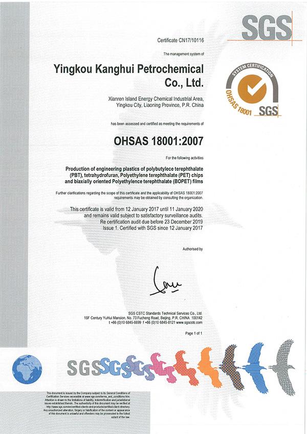 OHSAS18001:2007職業健康安全管理體系(英文版)